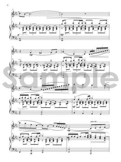 画像3: ROSCO'S Music Library vol.1 Racoondog