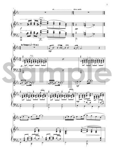 画像2: ROSCO'S Music Library vol.1 Racoondog